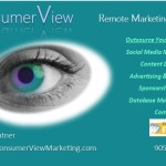 www.consumerViewmarketing.com
